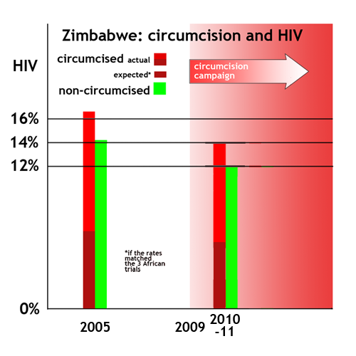 Zimbabwe: more HIV among circumcised than non-circumcised, 2005-2011