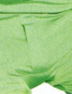 Close-up of Ben Stiller's green BVDs